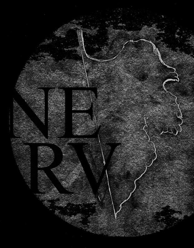 nerv1